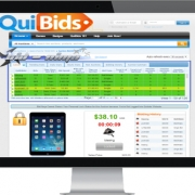 QuiBids Penny Auction Page on Monitor